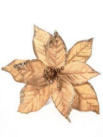 craciunita-auriu-rose (Medium)