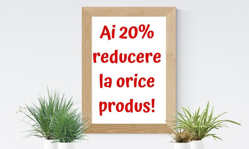 Decorațiuni casă: promoția primăverii – 20% reducere