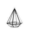 terarium-piramida-sticla