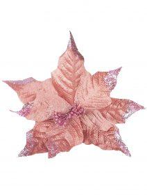 craciunita-roz-pudrat-brad